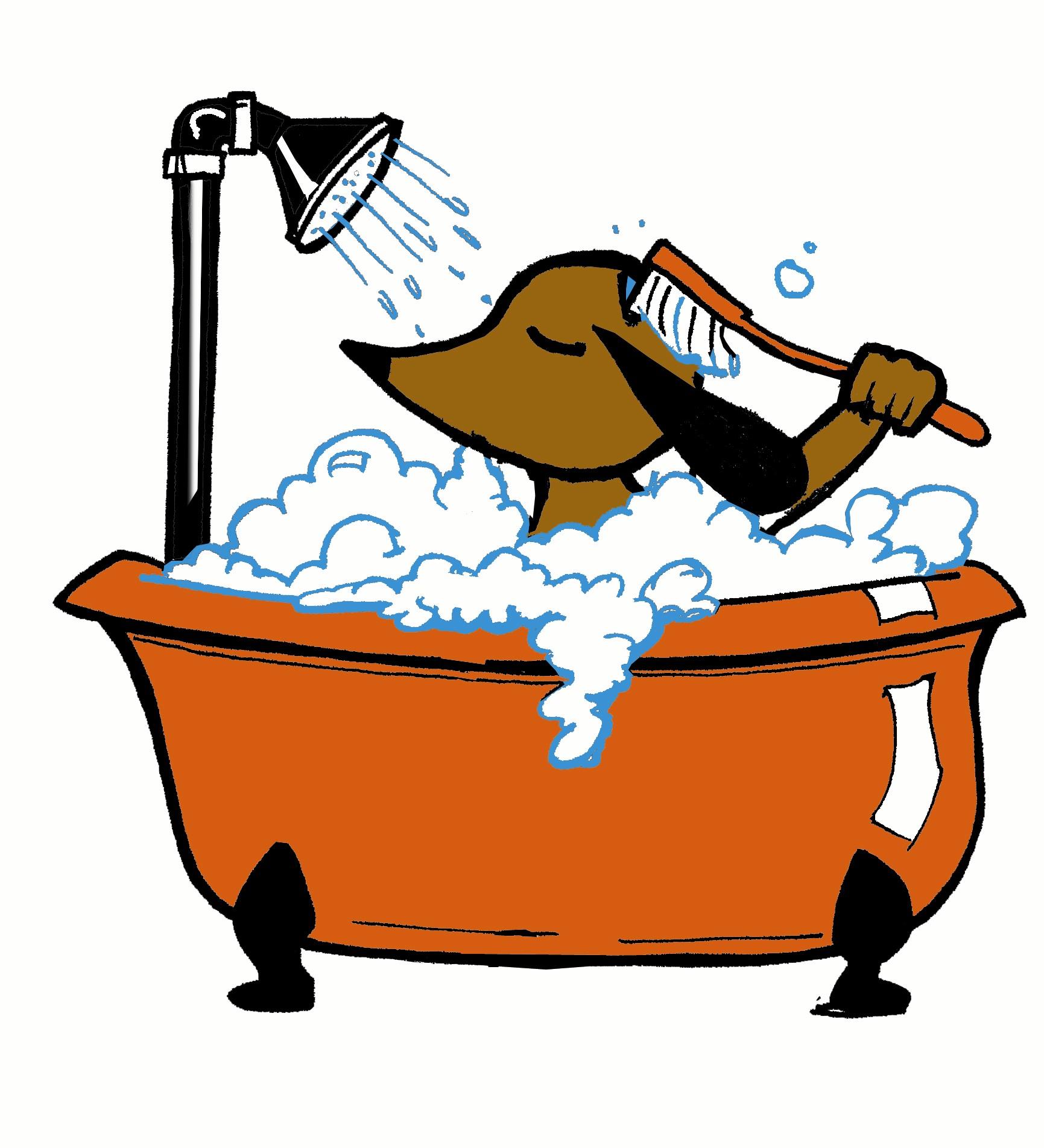 Giuntinipet fare il bagno al cane quando e come si fa - Come fare per andare in bagno ...