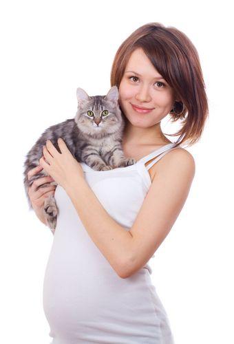 gravidanza e pet