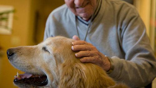 pet_therapy_anziani
