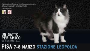 evento-Pisa-4